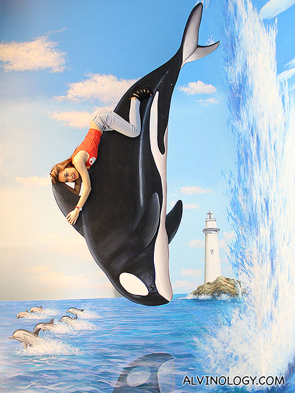 Riding on a Killer Whale