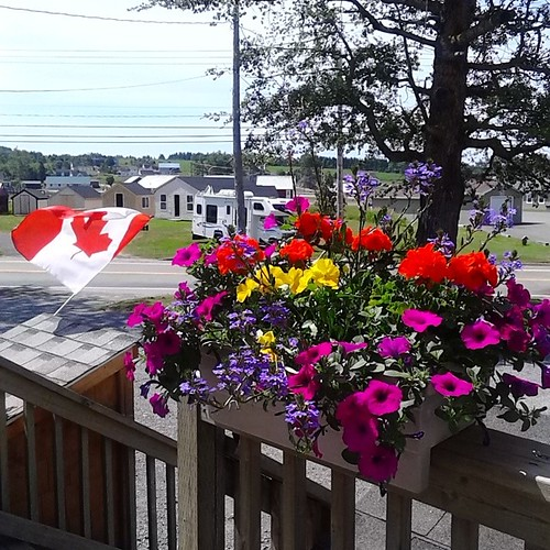 Flowers and flag, Rick's Fish and Chips, St. Peter's (2) #princeedwardisland #pei #stpeters #ricksfishandchips #flags #flowers #canada