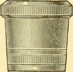 """Image from page 241 of """"Book of the black bass"""" (1889)"""