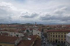 Firenze, vista dal Campanile