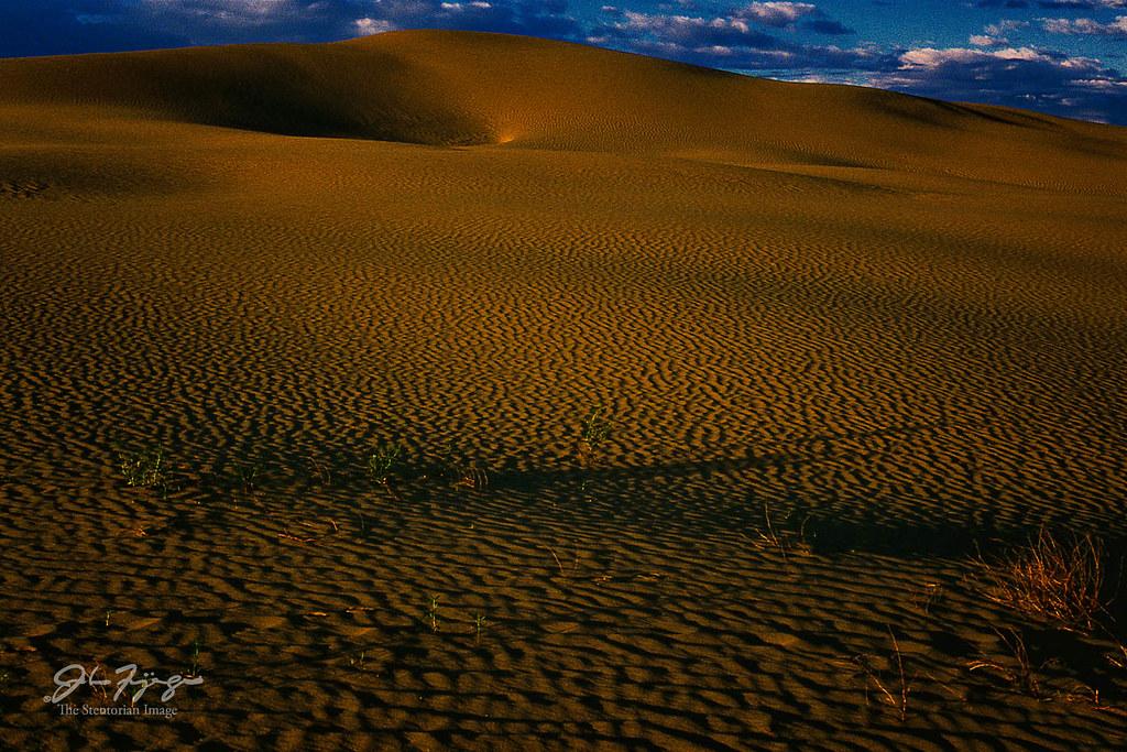 Sandhill Dunes