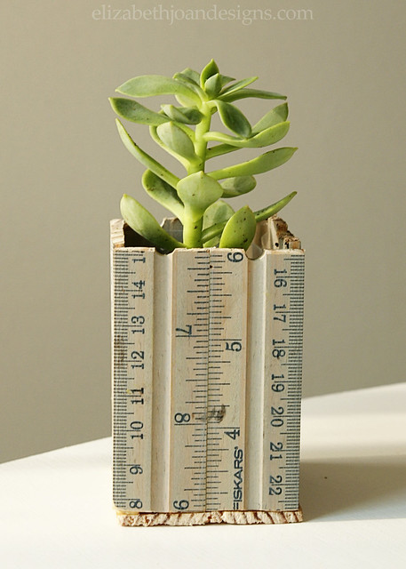Ruler Succulent Planter 8