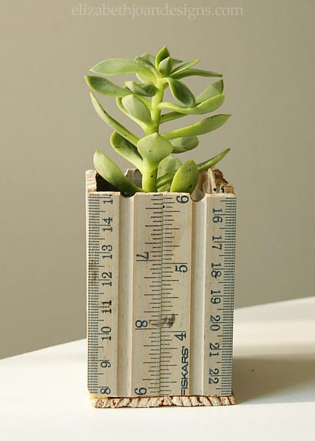 Ruler Succulent Planter 8
