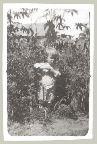Boy in field.