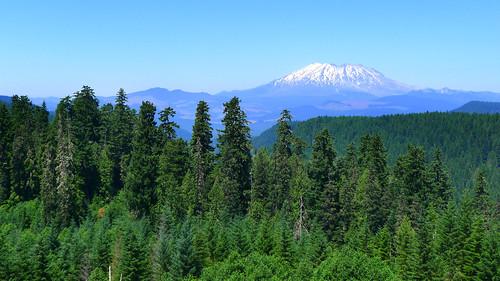 Mt St Helens Washington Cascades_0386