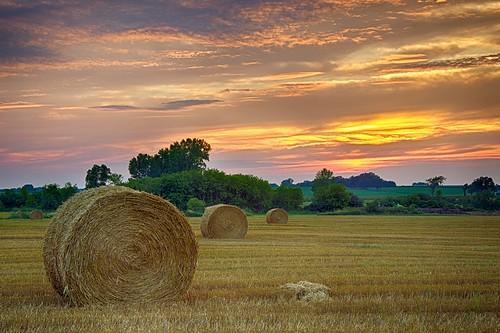 sunset landscape allenfarm hdrlandscape wisconsinlandscape johnhenrygremmer
