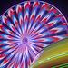 Erie County Fair_ferris wheel