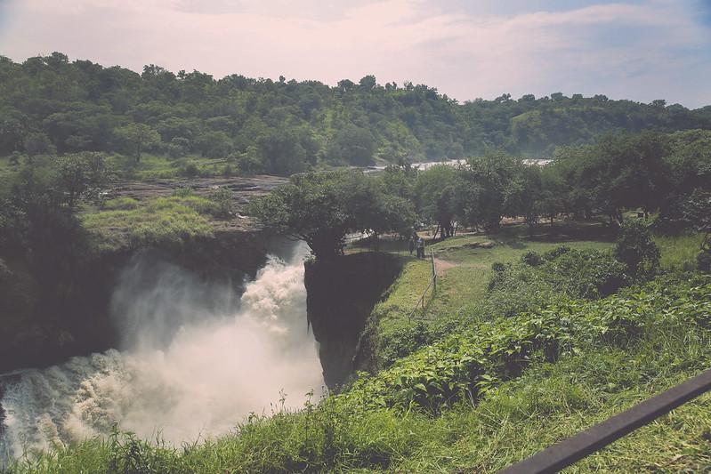 africansafari2014-5