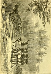 """Image from page 454 of """"The boy travellers in Australasia : adventures of two youths in a journey to the Sandwich, Marquesas, Society, Samoan and Feejee islands, and through the colonies of New Zealand, New South Wales, Queensland, Victoria, Tasmania, and"""