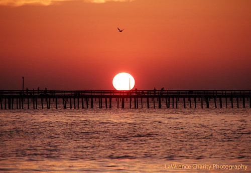 ocean charity sunset beach canon landscape photography eos virginia lawrence perfect view seagull 7d fishingpier 18200mm canoneos7d lawrencecharityphotography