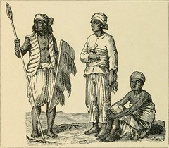 "Image from page 903 of ""The world's inhabitants; or, Mankind, animals, and plants; being a popular account of the races and nations of mankind, past and present, and the animals and plants inhabiting the great continents and principal islands"" (1888)"