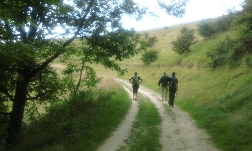 Ascent to South Downs Way