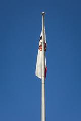 machine(0.0), vehicle(0.0), mast(0.0), wind(0.0), flag of the united states(0.0), wind turbine(0.0), flag(1.0), blue(1.0),