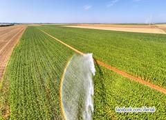 Irrigation nr Auzay