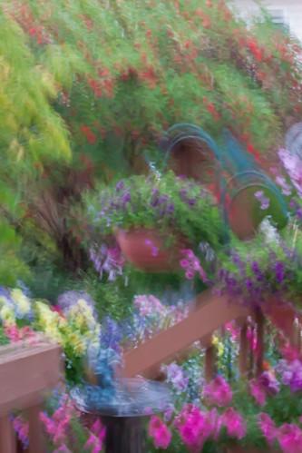 My Garden Titled Movement
