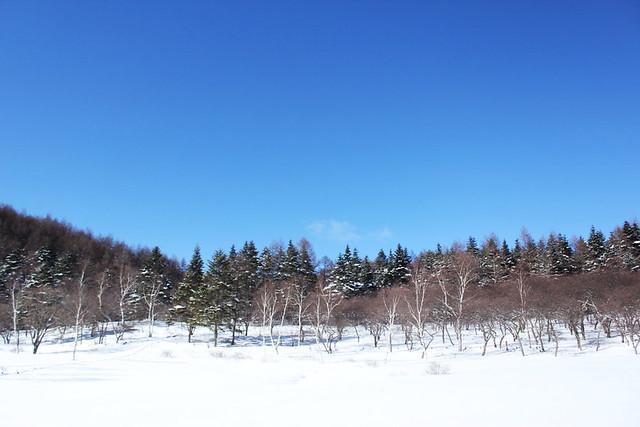 2014-01-19_00662_入笠山