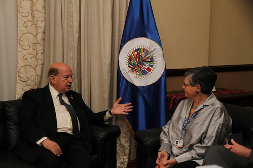 OAS Secretary General Meets with Representative of Global Commission on Drug Policy