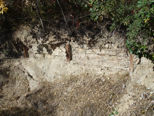 Railroad Rails used as supports along the foot path in Kendrick Park 9-21-14 (4)