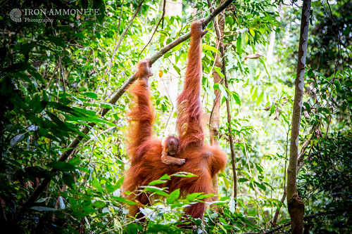 Hanging out with mum! A #WondersofTheMonsoon moment