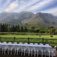 Celebrating the end of one season and the start of the next growing season. #stellenbosch #spring #blessed #nofilter