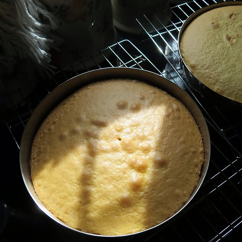 Tagged by @pumpkinsunrise for #widn just look a cake out if the oven and noticed the afternoon light on it. Taking my own advice from my ecourse and stopping to notice it!