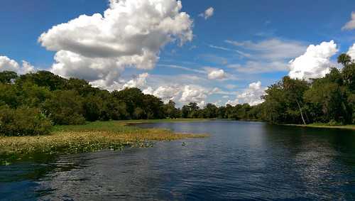 nature landscape florida pureflorida lovefl