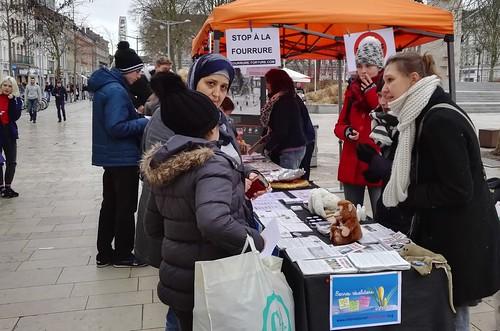 internationalcampaigns a posté une photo:sdr