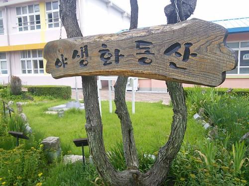 야생화 동산 | 화북초교