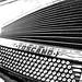 Vintage Accordion in B&W by Christie Clicks