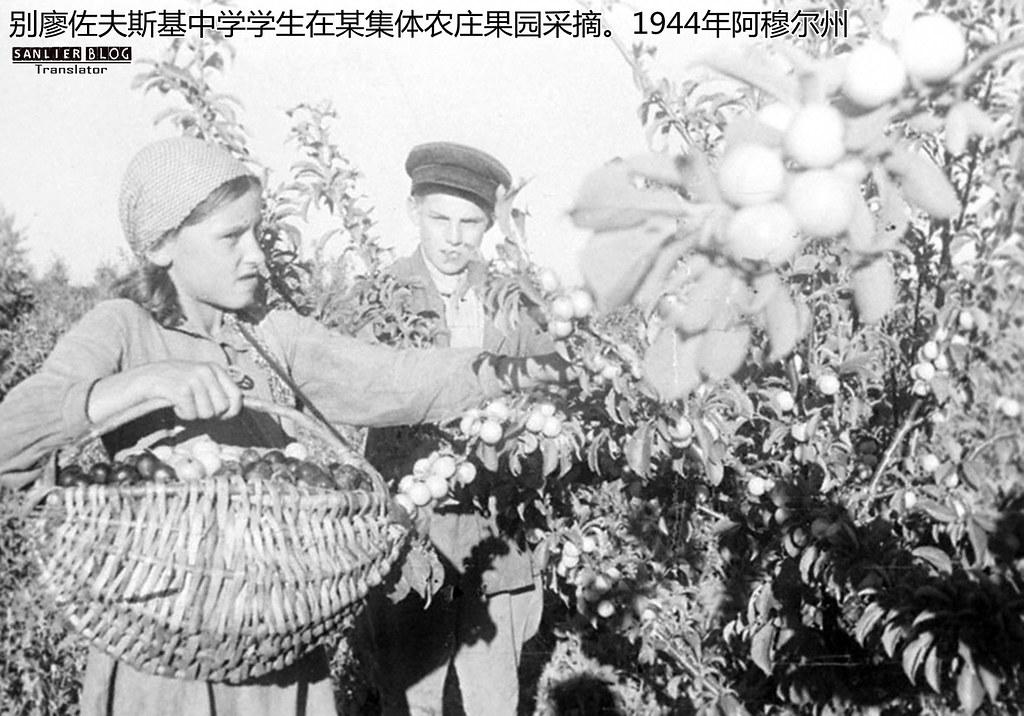 伟大卫国战争中的儿童37