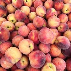 pluot(0.0), plant(0.0), damson(0.0), myrciaria dubia(0.0), apple(0.0), peach(1.0), produce(1.0), fruit(1.0), food(1.0), nectarine(1.0),