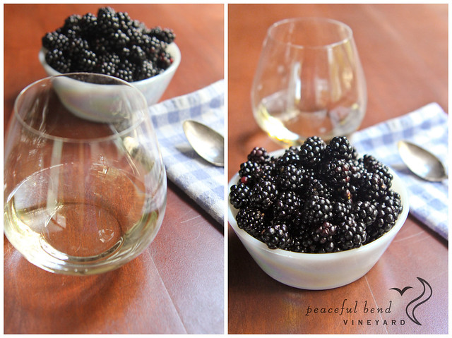 Blackberries & Wine