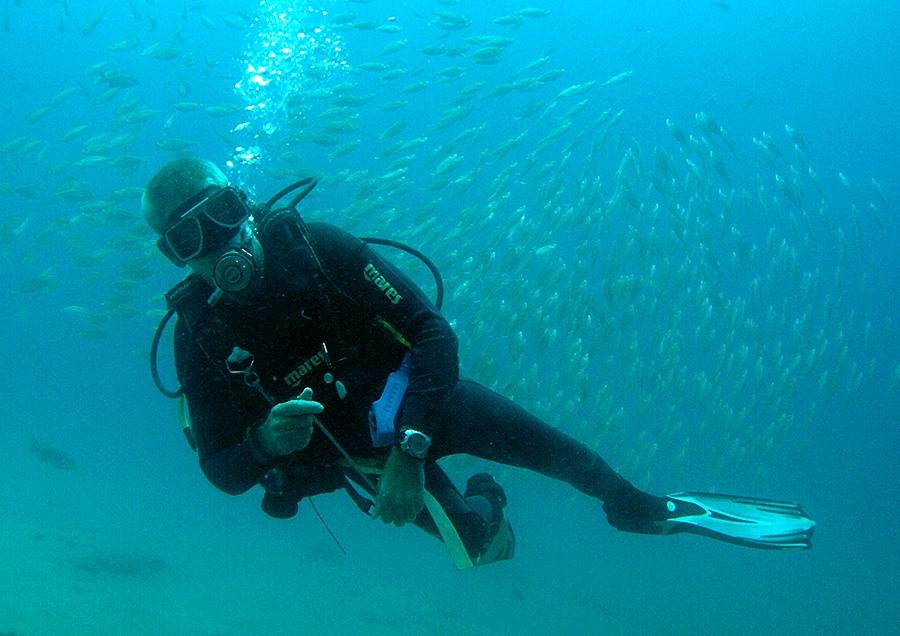 "<img src=""padi-choose-diving-instructor-tioman-island-malaysia.jpg"" alt=""PADI Choose diving instructor, Tioman Island, Malaysia"" />"