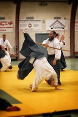 daitå ryå« aiki jå«jutsu, aikido, individual sports, contact sport, sports, combat sport, martial arts, japanese martial arts,