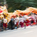 Mythical Chinese Dragon comes alive