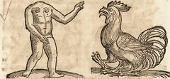 """Image from page 656 of """"Prodigiorvm ac ostentorvm chronicon : quae praeter naturae ordinem, motum, et operationem, et in svperioribus & his inferioribus mundi regionibus, ab exordio mundi usque ad haec nostra tempora, acciderunt ..."""" (1557)"""