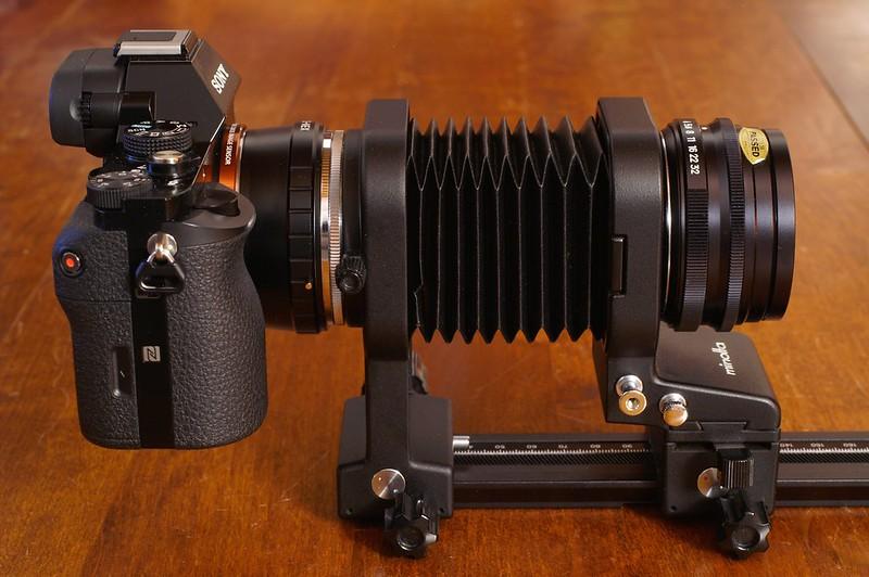 G-Shock camouflage en modèle 14890239240_c05a65f640_c