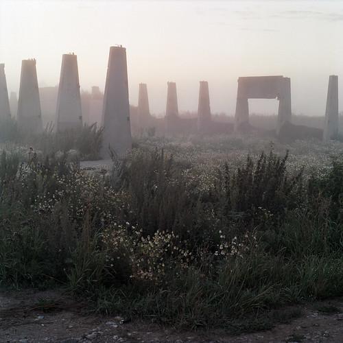 morning abandoned film grass fog landscape concrete dawn village russia farm pit silo hasselblad bunker collective ussr россия cowhouse пленка kolkhoz