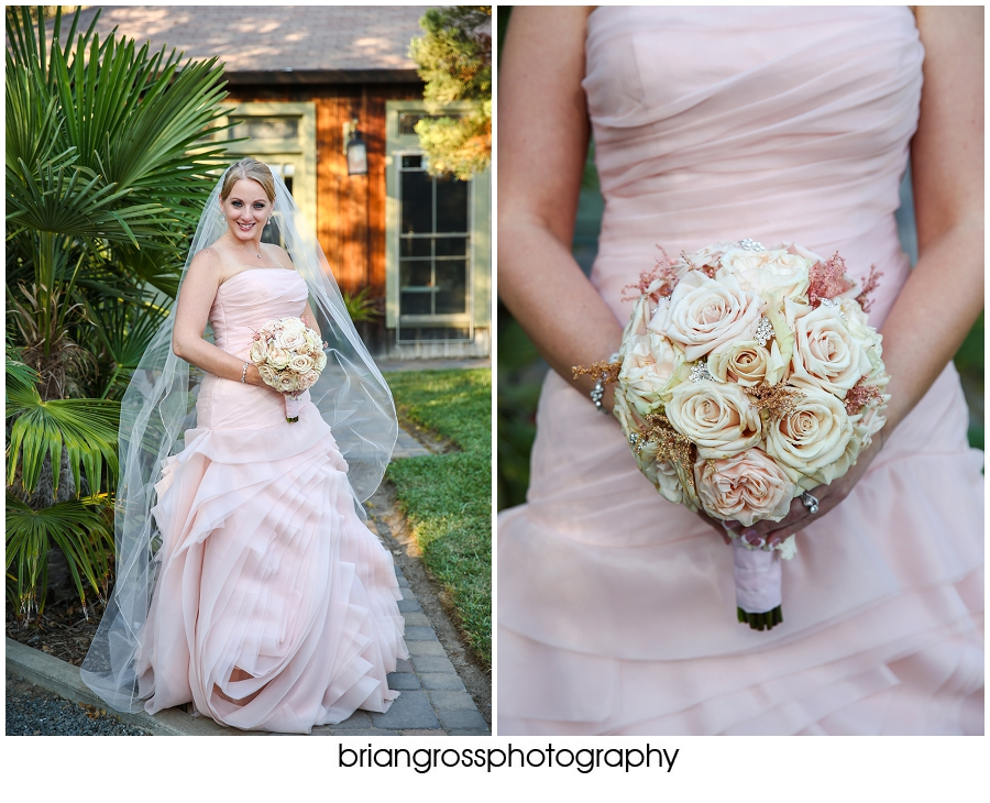 Brandi_Will_Preview_BrianGrossPhotography-193