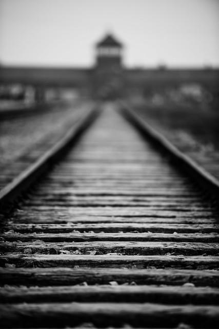 Auschwitz Birkenau Tracks