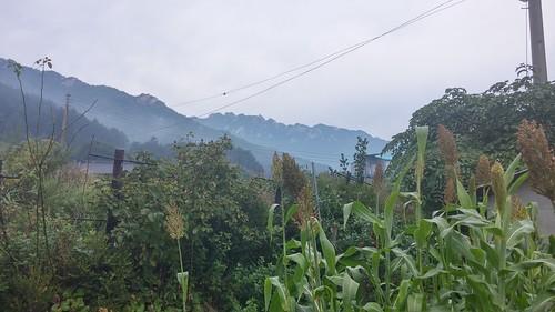 시골집 풍경 | 한가위 물놀이