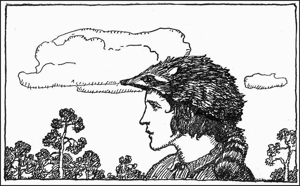 Wyeth_NC64