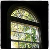 I love the early stages of autumn, when the leaves start to change. (This is not my window - I'm in the local library.)