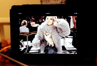 ipad / fashion girl and dog