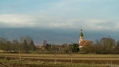 virée vers Andlau en venant de Matzenheim