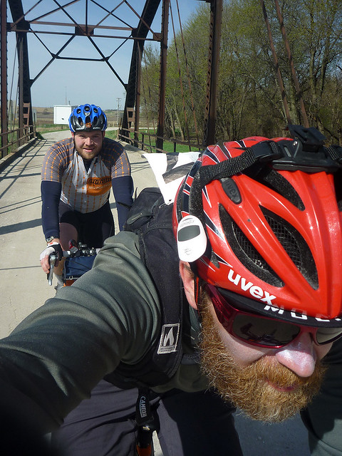 Bridge Dave Panda