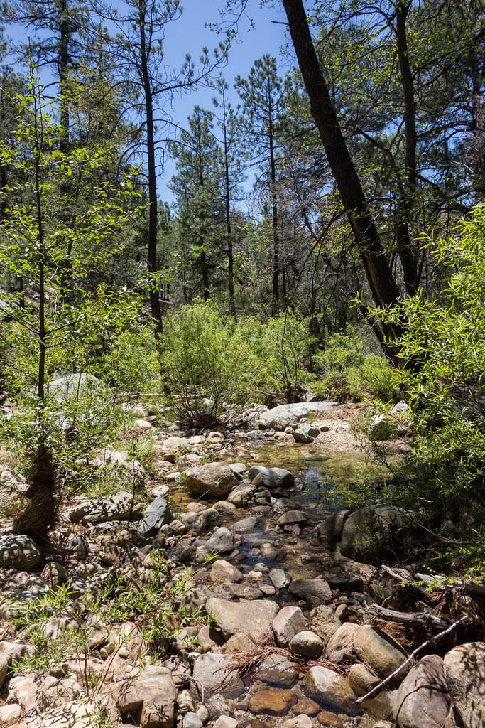 1404 Stream crossing on the Wilderness of Rocks