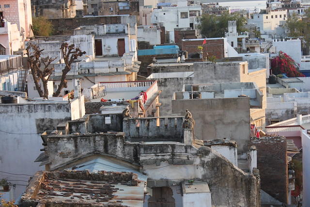 20130220_1297-Udaipur-rooftop-view