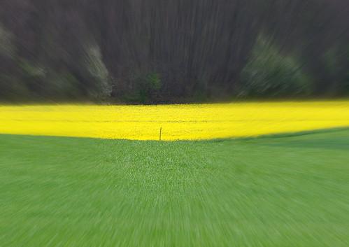 _grün_gelb