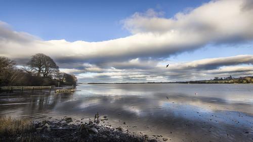 ferrycarrig jetty